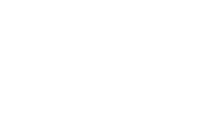 white version of the North East Business Support Fund logo