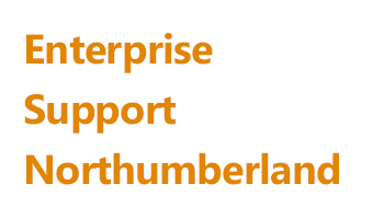 Enterprise support Northumberland Logo - Support for people to start a business in Northumberland.